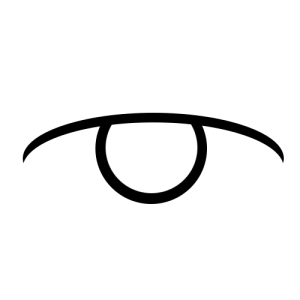Pictogram of an eye, meant to represent the sense of Sight.